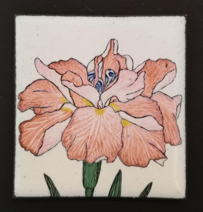 mignature émail peint iris