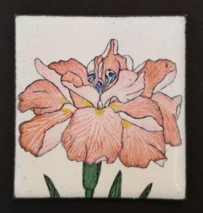 Iris en émail peint sur métal